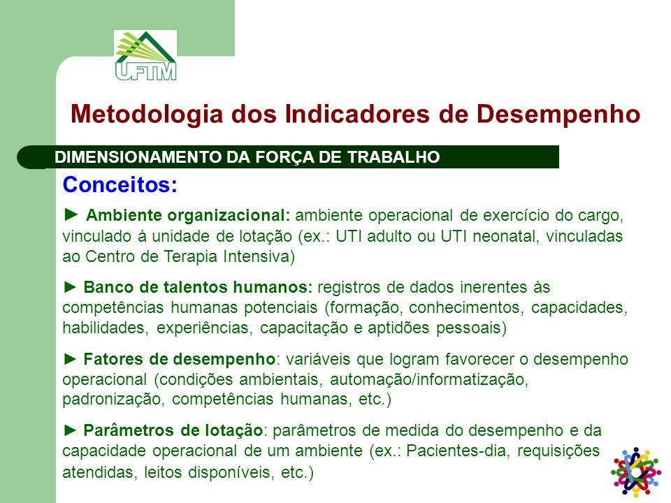 Metodologia dos Indicadores de Desempenho DIMENSIONAMENTO DA FORÇA DE TRABALHO Conceitos: ► Ambiente organizacional: ambiente operacional de exercício