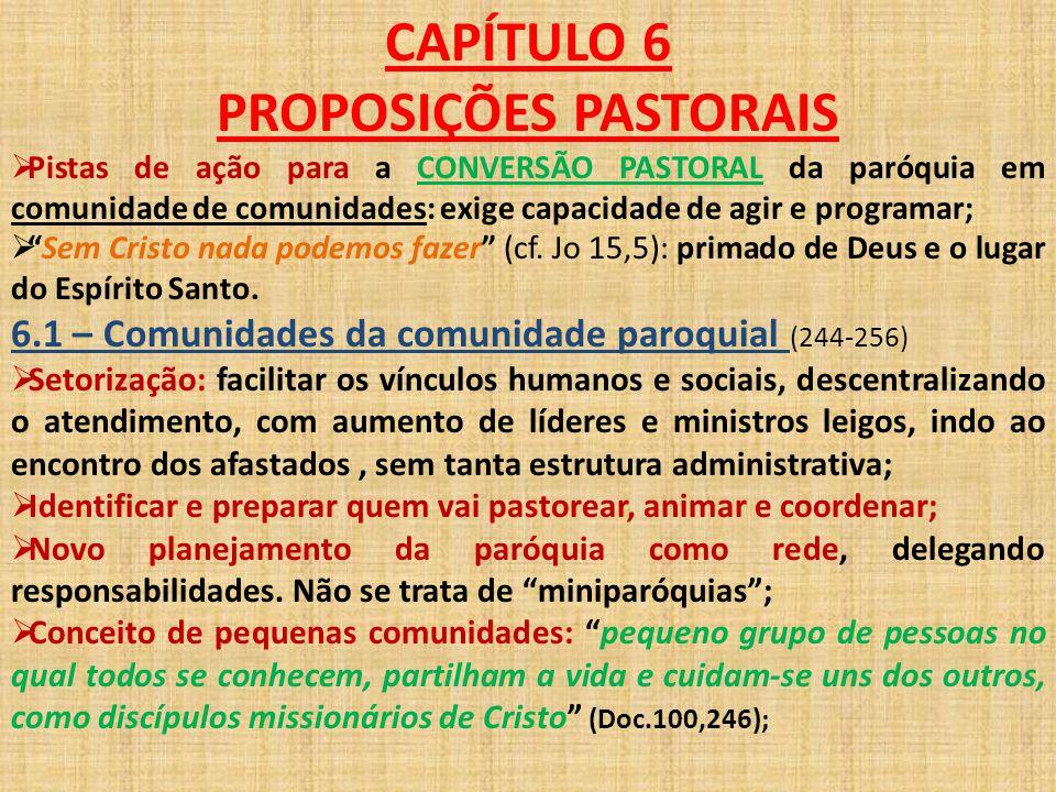 CAPÍTULO 6 PROPOSIÇÕES PASTORAIS  Pistas de ação para a CONVERSÃO PASTORAL da paróquia em comunidade de comunidades: exige capacidade de agir e progr