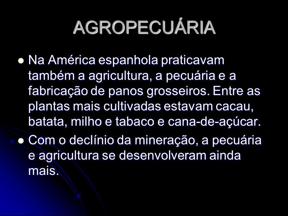 AGROPECUÁRIA Na América espanhola praticavam também a agricultura, a pecuária e a fabricação de panos grosseiros. Entre as plantas mais cultivadas est