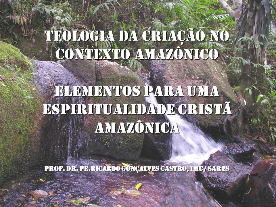TEOLOGIA DA CRIAÇÃO NO CONTEXTO AMAZÔNICO Elementos para uma espiritualidade cristã amazônica Prof. Dr. Pe.Ricardo Gonçalves Castro, IMC / SARES