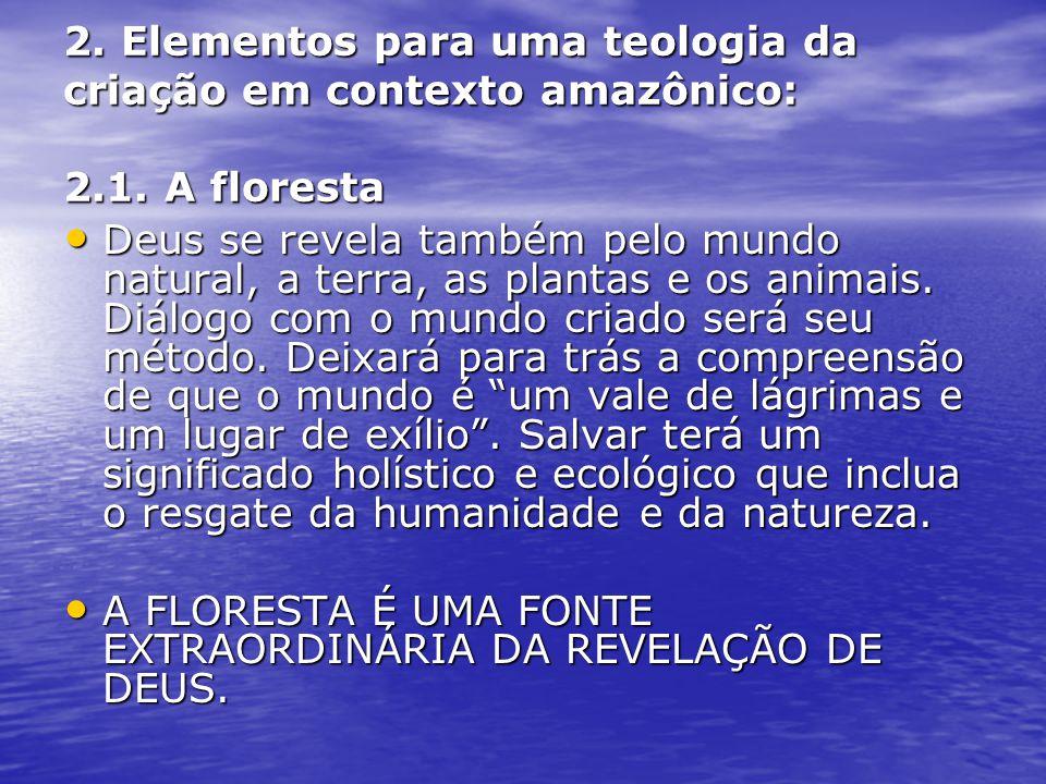 2. Elementos para uma teologia da criação em contexto amazônico: 2.1. A floresta Deus se revela também pelo mundo natural, a terra, as plantas e os an