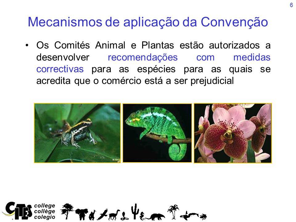 6 Mecanismos de aplicação da Convenção Os Comités Animal e Plantas estão autorizados a desenvolver recomendações com medidas correctivas para as espécies para as quais se acredita que o comércio está a ser prejudicial