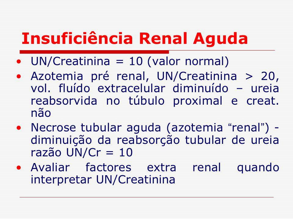 Insuficiência Renal Aguda UN/Creatinina = 10 (valor normal) Azotemia pré renal, UN/Creatinina > 20, vol. fluído extracelular diminuído – ureia reabsor