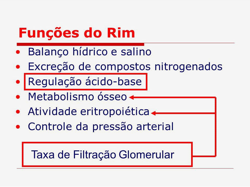 Funções do Rim Balanço hídrico e salino Excreção de compostos nitrogenados Regulação ácido-base Metabolismo ósseo Atividade eritropoiética Controle da