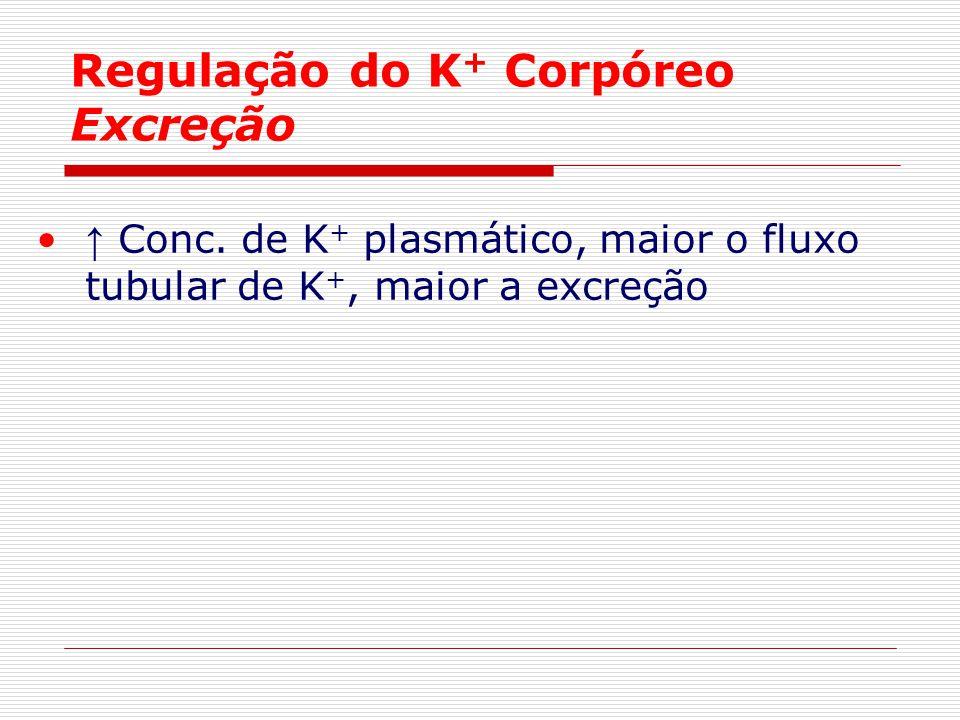 Regulação do K + Corpóreo Excreção ↑ Conc. de K + plasmático, maior o fluxo tubular de K +, maior a excreção