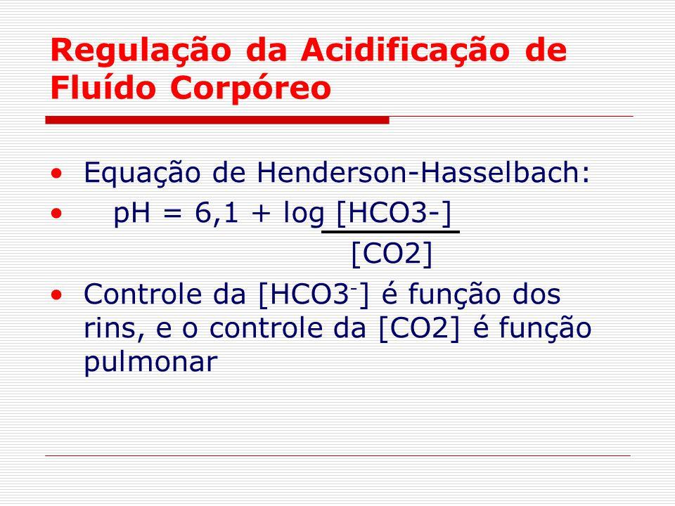 Regulação da Acidificação de Fluído Corpóreo Equação de Henderson-Hasselbach: pH = 6,1 + log [HCO3-] [CO2] Controle da [HCO3 - ] é função dos rins, e