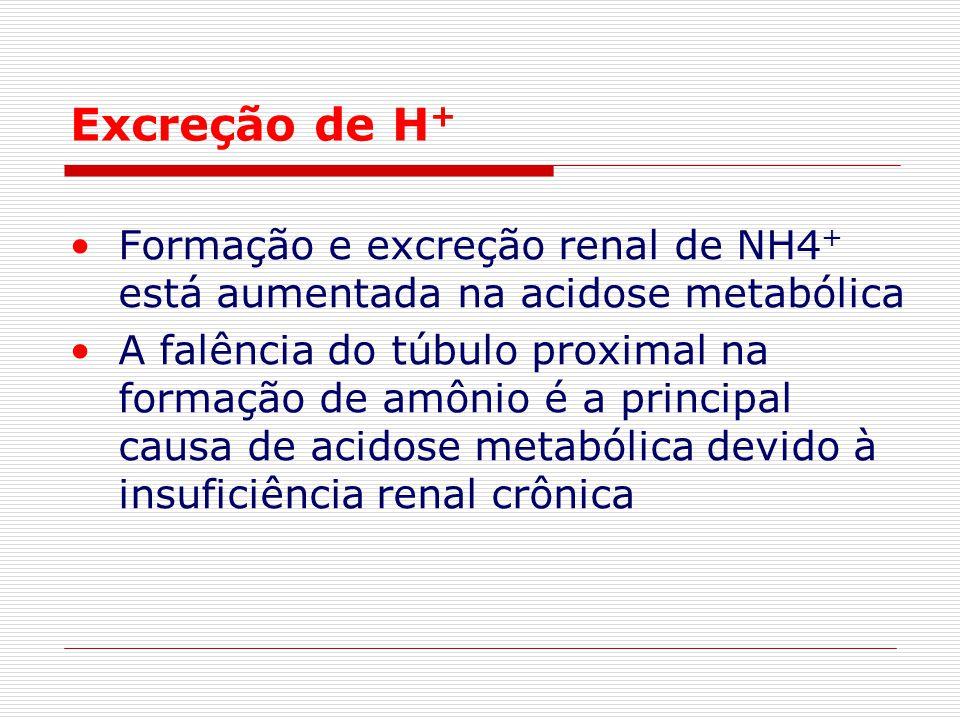 Excreção de H + Formação e excreção renal de NH4 + está aumentada na acidose metabólica A falência do túbulo proximal na formação de amônio é a princi