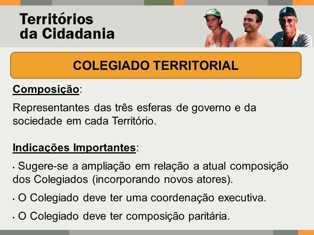 Composição: Representantes das três esferas de governo e da sociedade em cada Território.