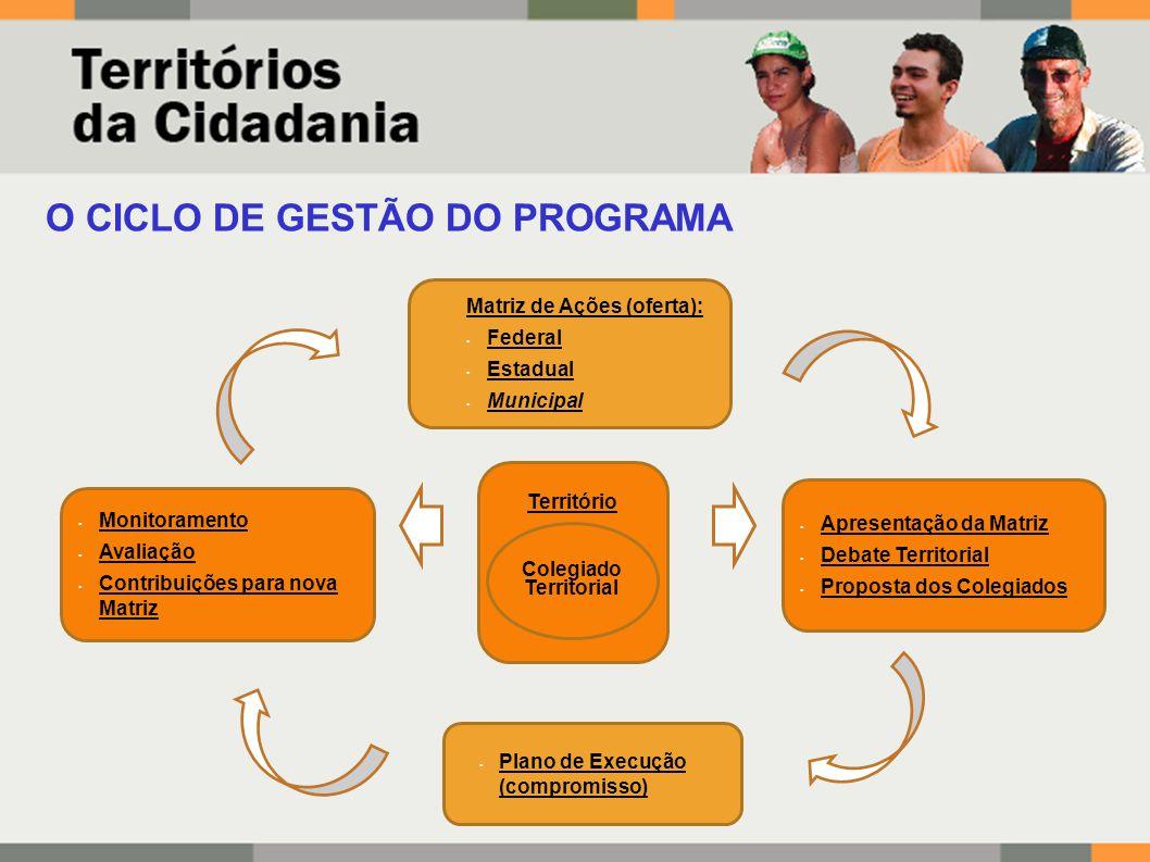 Comitê Gestor Nacional Comitê de Articulação Estadual Colegiado Territorial INSTÂNCIAS DE GESTÃO