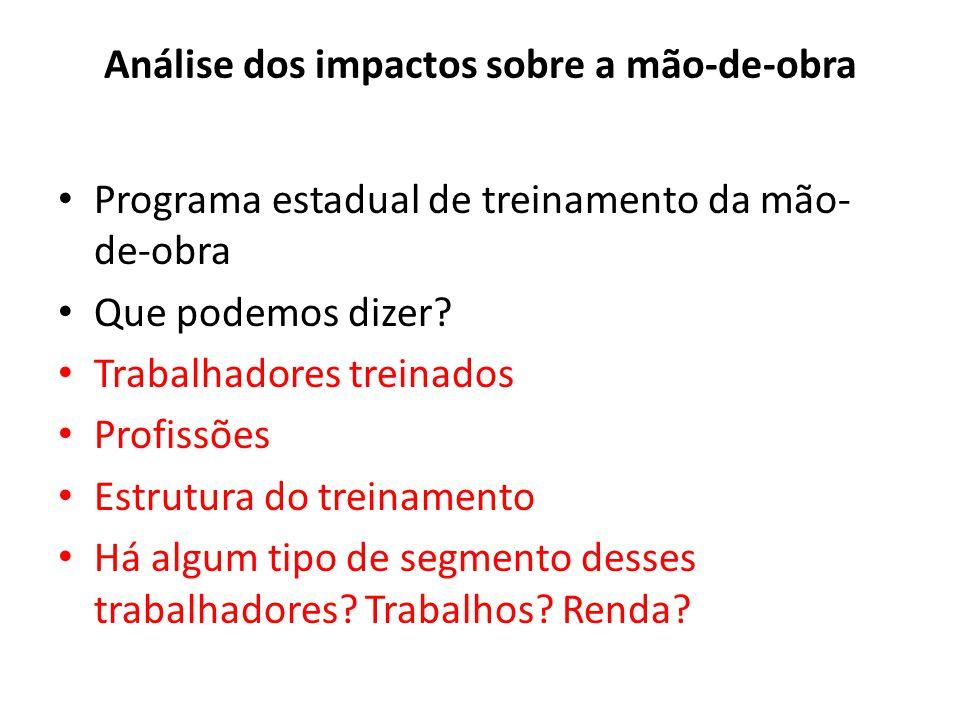 Análise dos impactos sobre a mão-de-obra Programa estadual de treinamento da mão- de-obra Que podemos dizer? Trabalhadores treinados Profissões Estrut