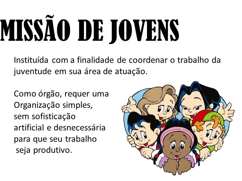COMISSÃO DE JOVENS Instituída com a finalidade de coordenar o trabalho da juventude em sua área de atuação. Como órgão, requer uma Organização simples