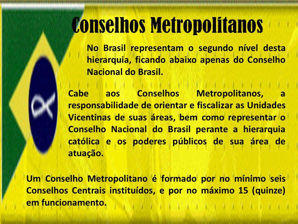 Cabe aos Conselhos Metropolitanos, a responsabilidade de orientar e fiscalizar as Unidades Vicentinas de suas áreas, bem como representar o Conselho Nacional do Brasil perante a hierarquia católica e os poderes públicos de sua área de atuação.
