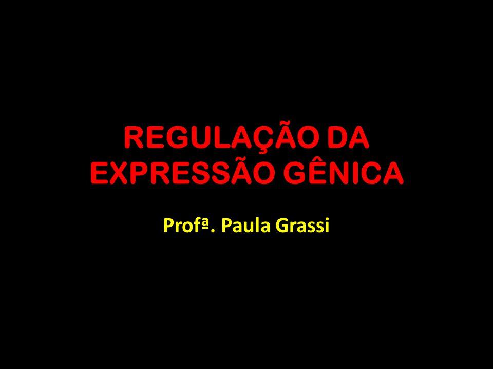 REGULAÇÃO DA EXPRESSÃO GÊNICA Profª. Paula Grassi