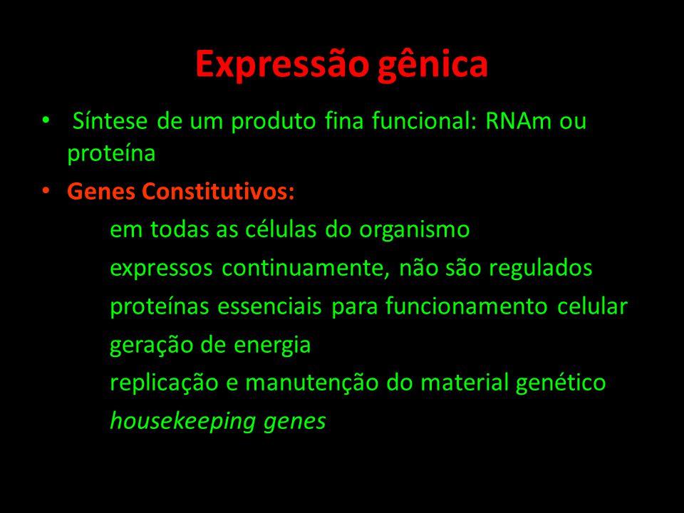 Expressão gênica Síntese de um produto fina funcional: RNAm ou proteína Genes Constitutivos: em todas as células do organismo expressos continuamente,