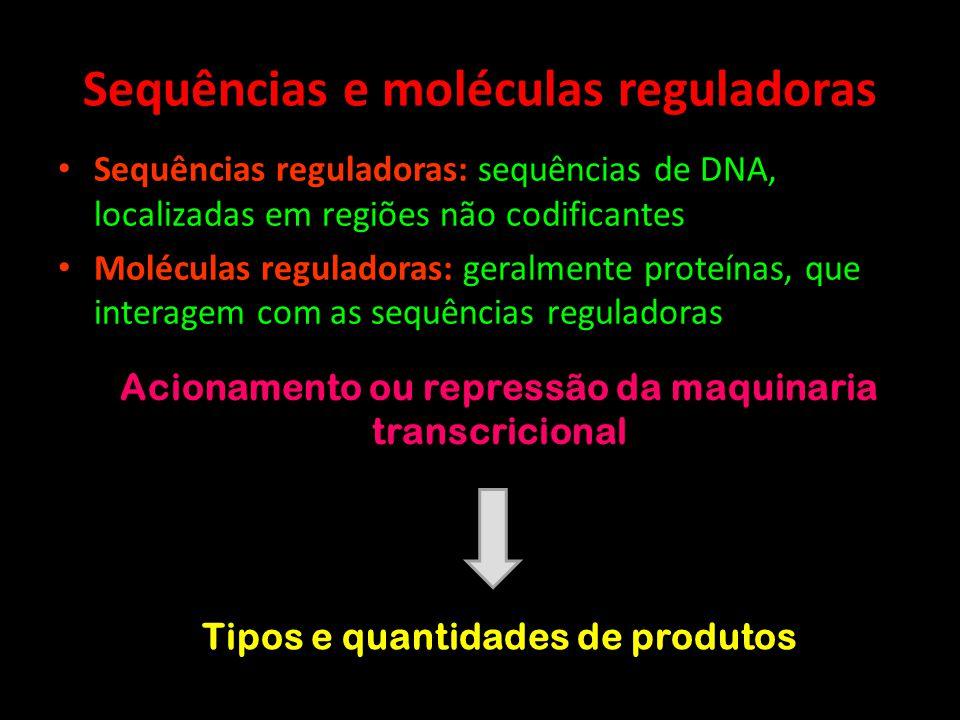 Regulação da expressão gênica em Procariotos OPERONS BACTERIANOS: Genes de uma mesma via metabólica – agrupamento em sequência RNAm policistrônico OPERADOR: Segmento de DNA que regula a atividade do operon Repressor: bloqueia a RNApol Indutor: liga-se ao repressor, anulando seu efeito