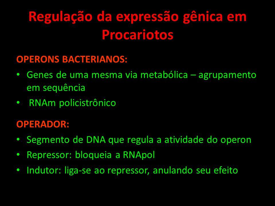 Regulação da expressão gênica em Procariotos OPERONS BACTERIANOS: Genes de uma mesma via metabólica – agrupamento em sequência RNAm policistrônico OPE