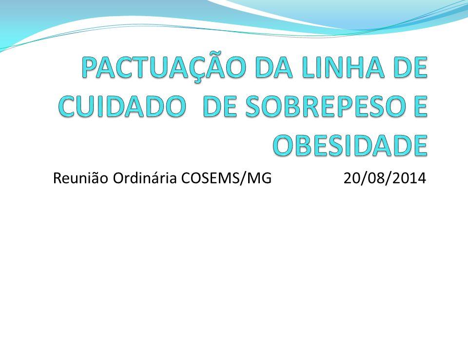 Reunião Ordinária COSEMS/MG 20/08/2014