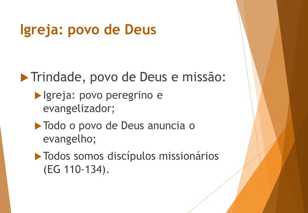 Igreja: povo de Deus  Trindade, povo de Deus e missão:  Igreja: povo peregrino e evangelizador;  Todo o povo de Deus anuncia o evangelho;  Todos somos discípulos missionários (EG 110-134).