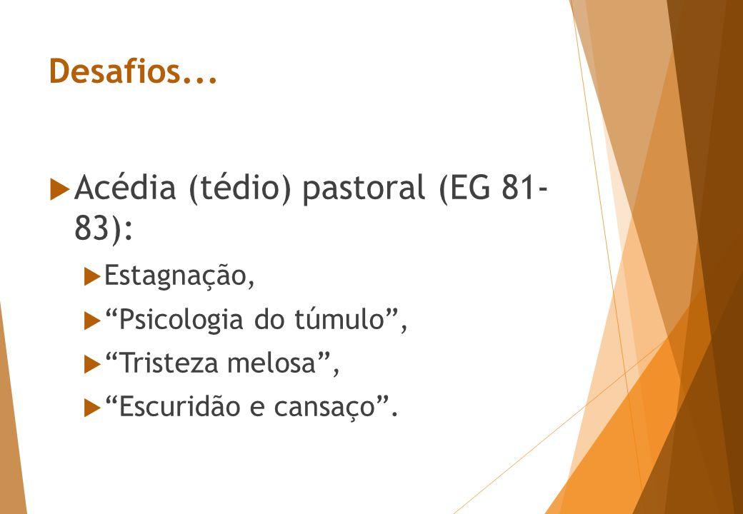 Não deixemos que nos roubem a alegria da evangelização! EG 83