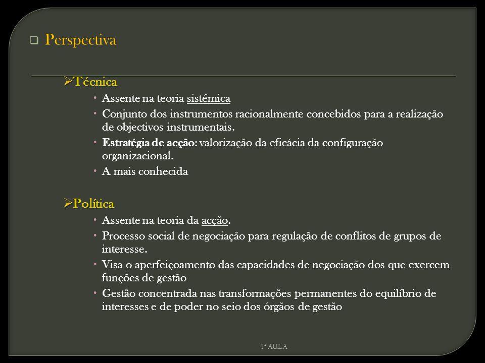  Perspectiva  Técnica  Assente na teoria sistémica  Conjunto dos instrumentos racionalmente concebidos para a realização de objectivos instrumenta