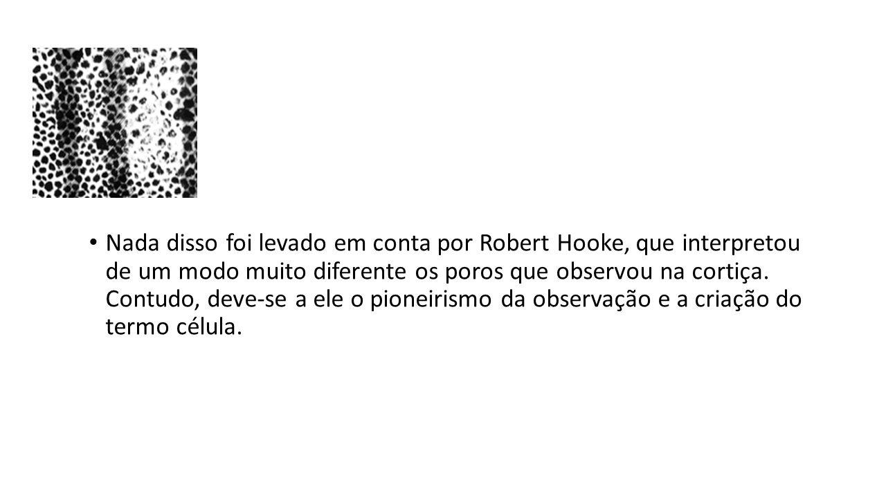 Nada disso foi levado em conta por Robert Hooke, que interpretou de um modo muito diferente os poros que observou na cortiça. Contudo, deve-se a ele o