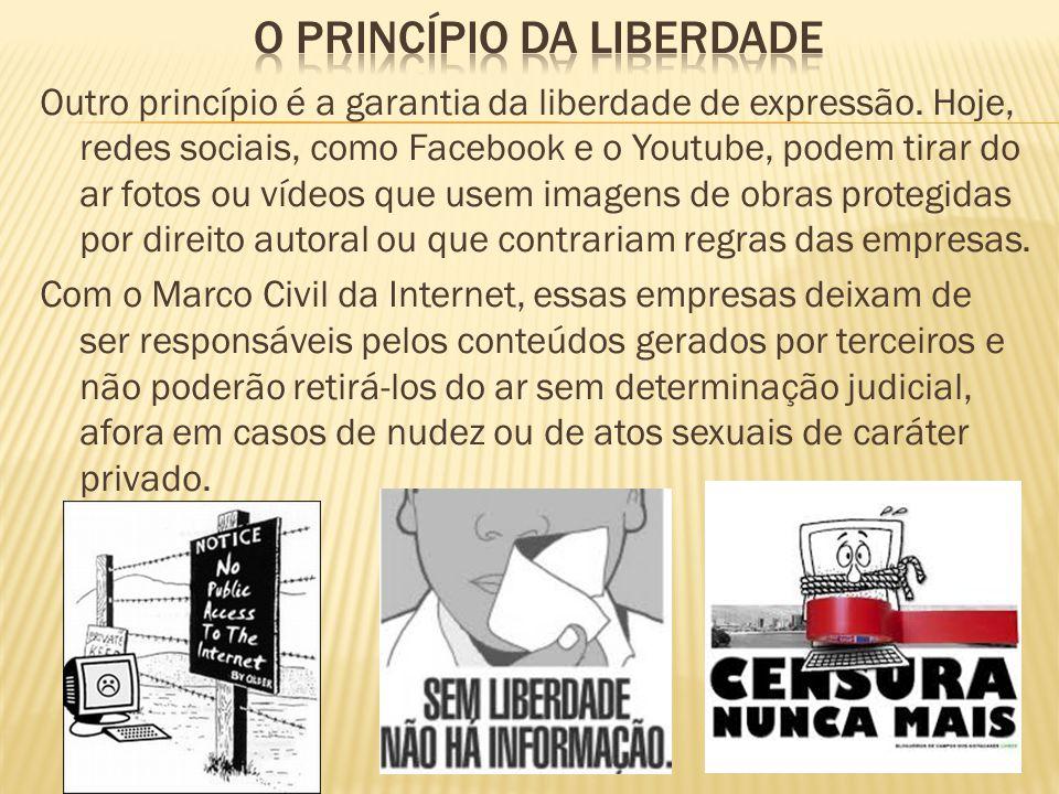 Outro princípio é a garantia da liberdade de expressão. Hoje, redes sociais, como Facebook e o Youtube, podem tirar do ar fotos ou vídeos que usem ima