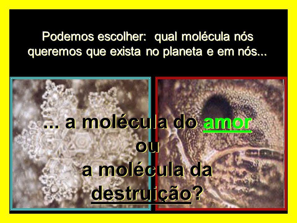 Podemos escolher: qual molécula nós queremos que exista no planeta e em nós...... a molécula do amor ou a molécula da destruição?