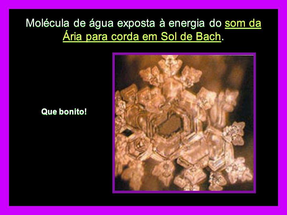 Molécula de água exposta à energia do som da Ária para corda em Sol de Bach. Que bonito!