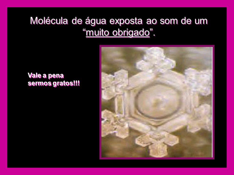 """Molécula de água exposta ao som de um """"muito obrigado"""". Vale a pena sermos gratos!!!"""