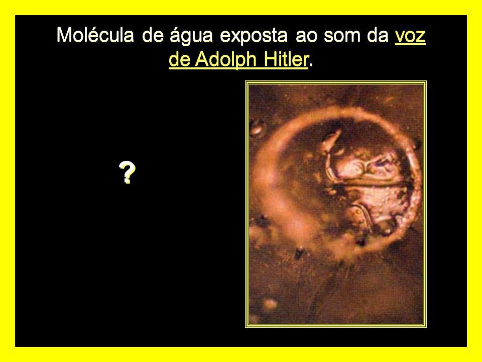 Molécula de água exposta ao som da voz de Adolph Hitler. ? ?