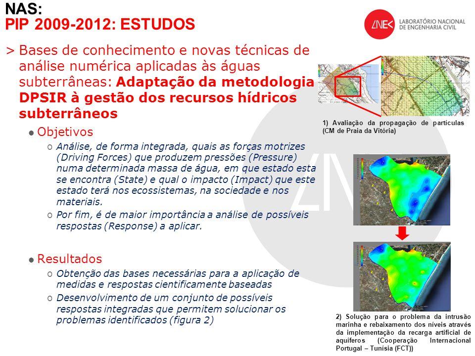 >Bases de conhecimento e novas técnicas de análise numérica aplicadas às águas subterrâneas: Adaptação da metodologia DPSIR à gestão dos recursos hídr