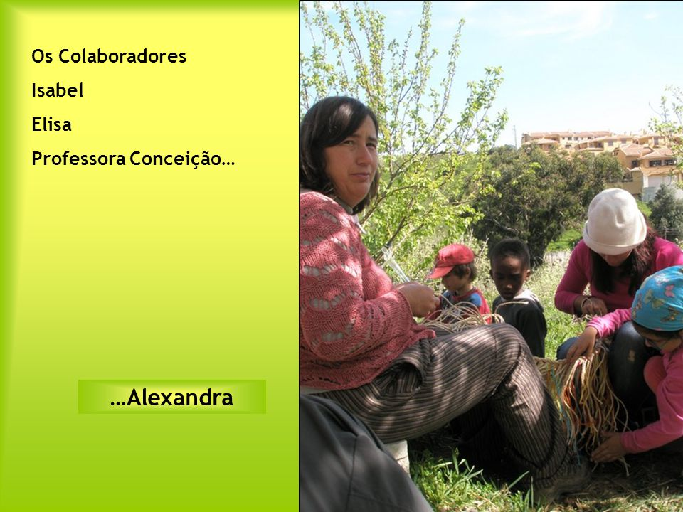 Os Colaboradores Isabel Elisa Professora Conceição… …Alexandra
