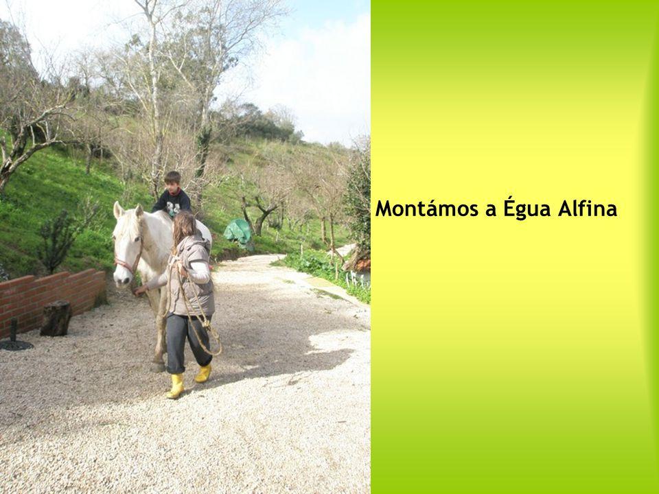 e Zé Padinha que nos presentearam, com os seus saberes, momentos muito especiais em todas as actividades da quinta!
