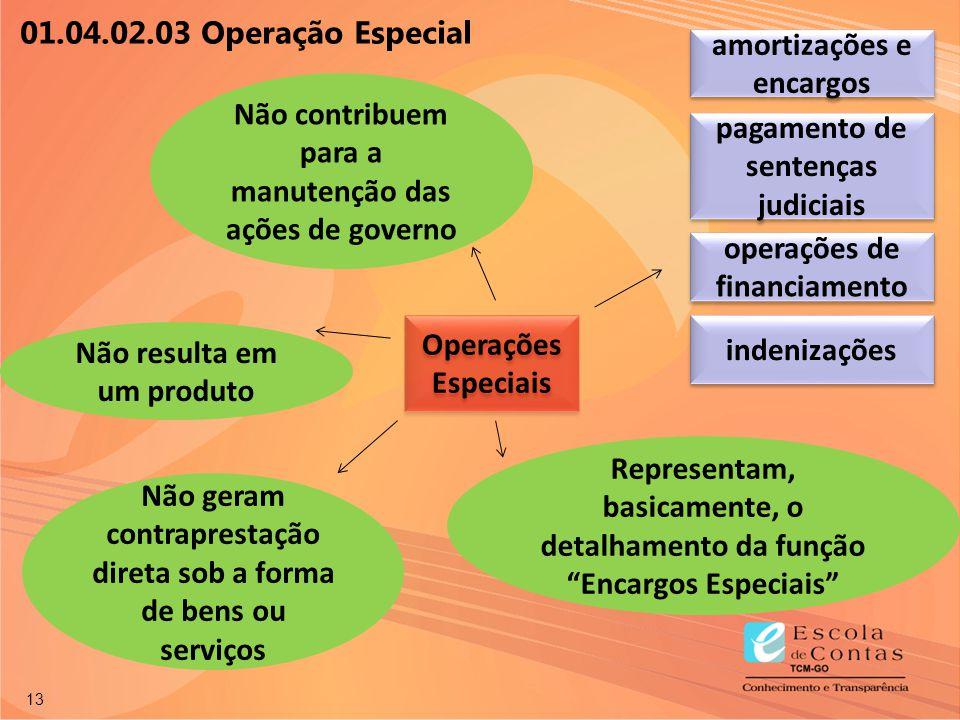 13 Operações Especiais Não resulta em um produto Não contribuem para a manutenção das ações de governo operações de financiamento amortizações e encar