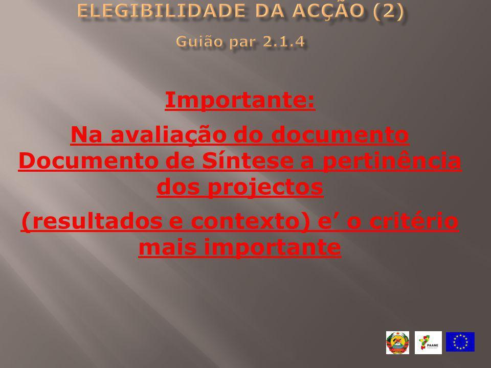 Importante: Na avaliação do documento Documento de Síntese a pertinência dos projectos (resultados e contexto) e' o critério mais importante