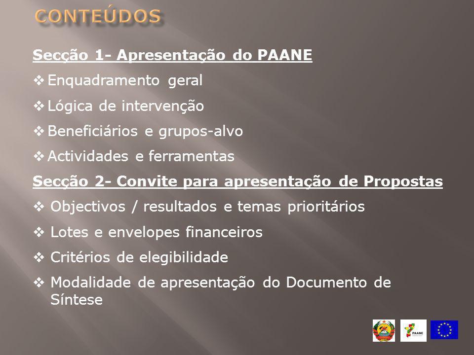 Secção 1- Apresentação do PAANE  Enquadramento geral  Lógica de intervenção  Beneficiários e grupos-alvo  Actividades e ferramentas Secção 2- Conv
