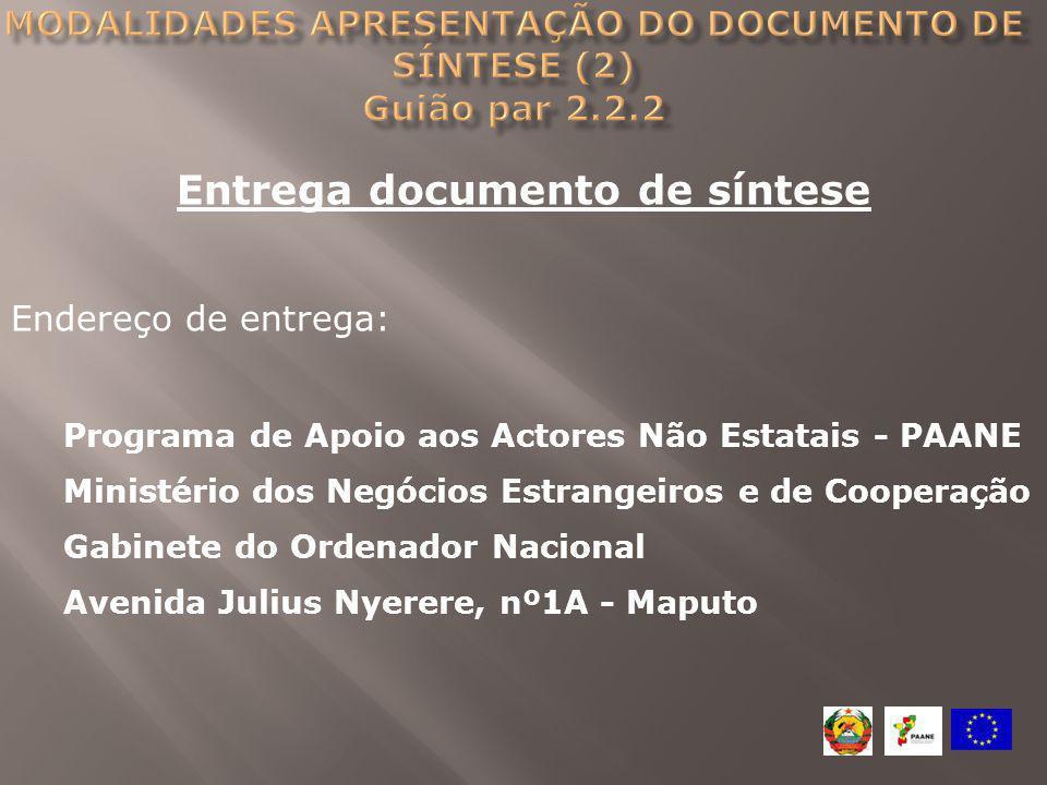 Entrega documento de síntese Endereço de entrega: Programa de Apoio aos Actores Não Estatais - PAANE Ministério dos Negócios Estrangeiros e de Coopera