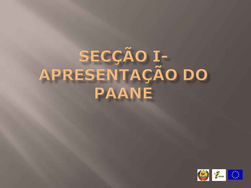 Documento de síntese Deve também: Ser em português Incluir lista de controlo devidamente preenchida (Parte A, sec.