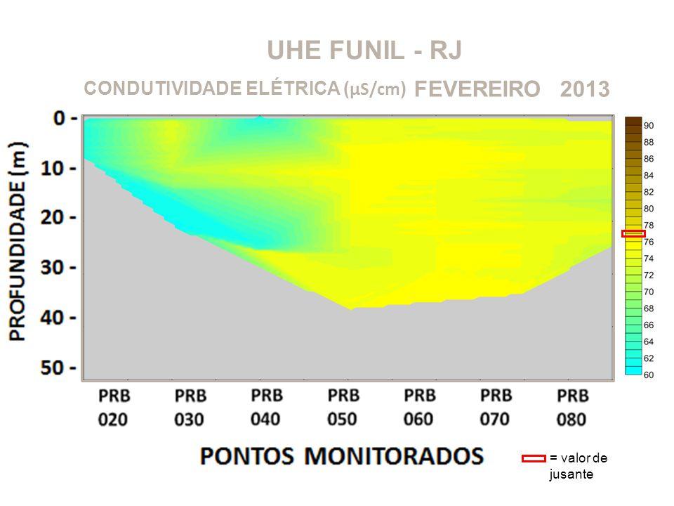 UHE FUNIL - RJ 2013FEVEREIRO CONDUTIVIDADE ELÉTRICA ( μS/cm ) = valor de jusante