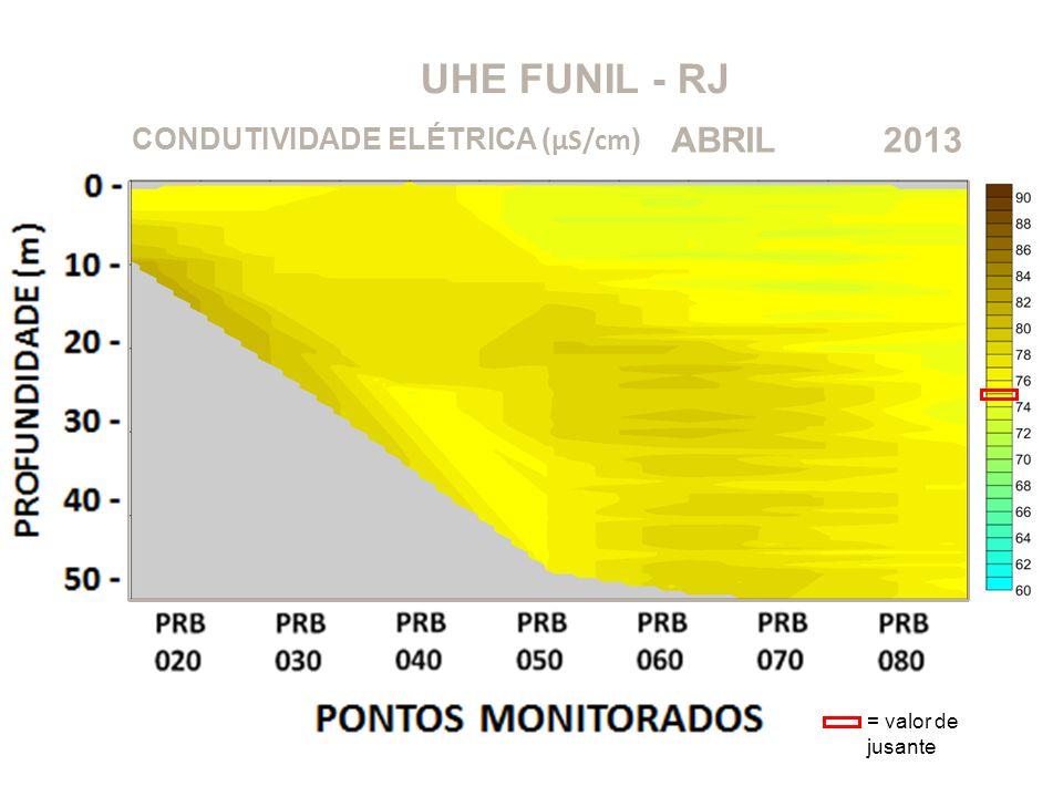 UHE FUNIL - RJ 2013ABRIL CONDUTIVIDADE ELÉTRICA ( μS/cm ) = valor de jusante