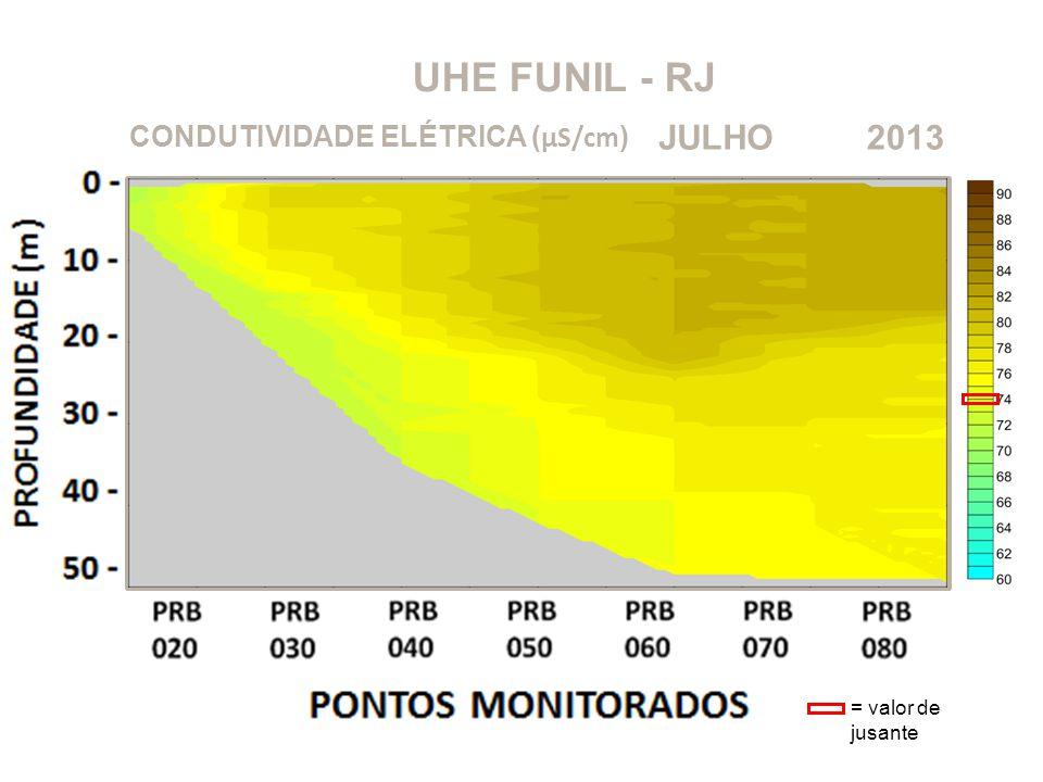 UHE FUNIL - RJ 2013JULHO CONDUTIVIDADE ELÉTRICA ( μS/cm ) = valor de jusante