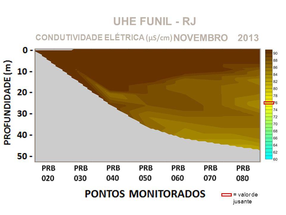 UHE FUNIL - RJ 2013NOVEMBRO CONDUTIVIDADE ELÉTRICA ( μS/cm ) = valor de jusante