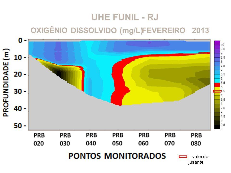 UHE FUNIL - RJ OXIGÊNIO DISSOLVIDO (mg/L)2013FEVEREIRO = valor de jusante