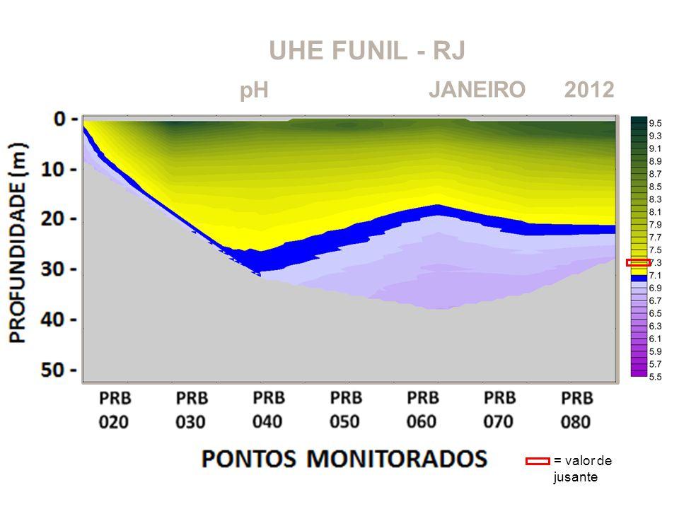 UHE FUNIL - RJ 2012JANEIRO pH = valor de jusante