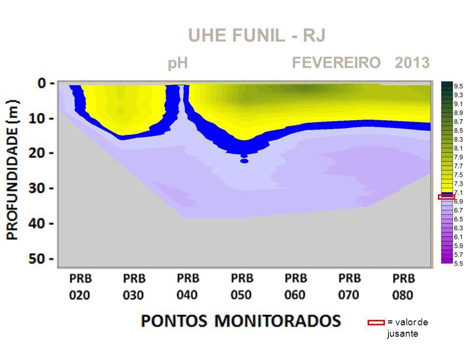 UHE FUNIL - RJ pH 2013FEVEREIRO = valor de jusante