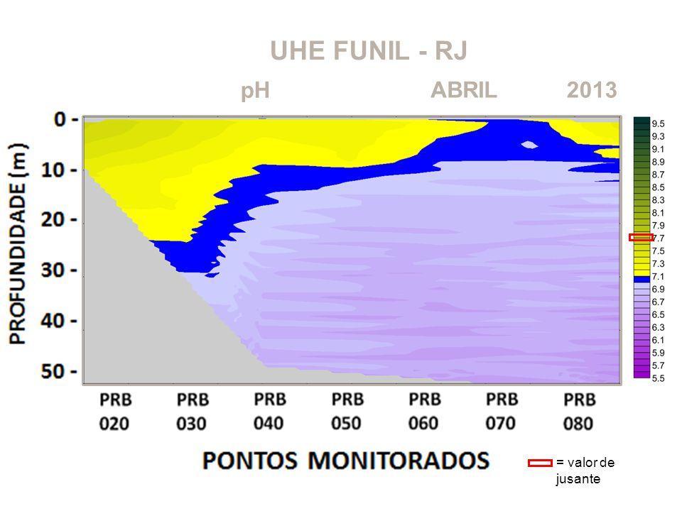 UHE FUNIL - RJ 2013ABRIL pH = valor de jusante