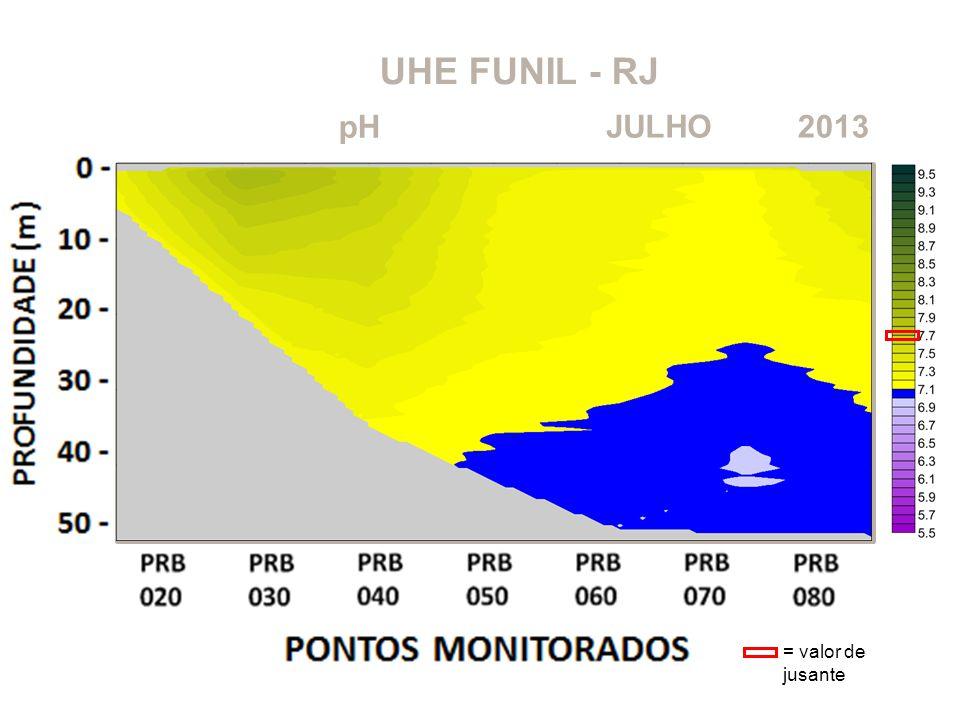 UHE FUNIL - RJ 2013JULHO pH = valor de jusante