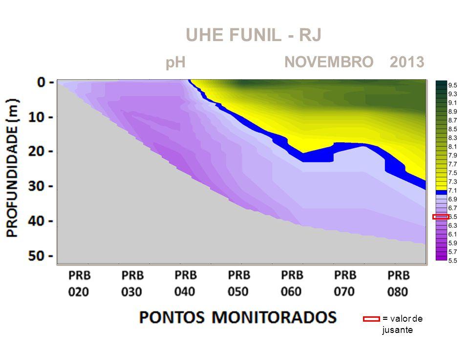 UHE FUNIL - RJ 2013NOVEMBRO pH = valor de jusante