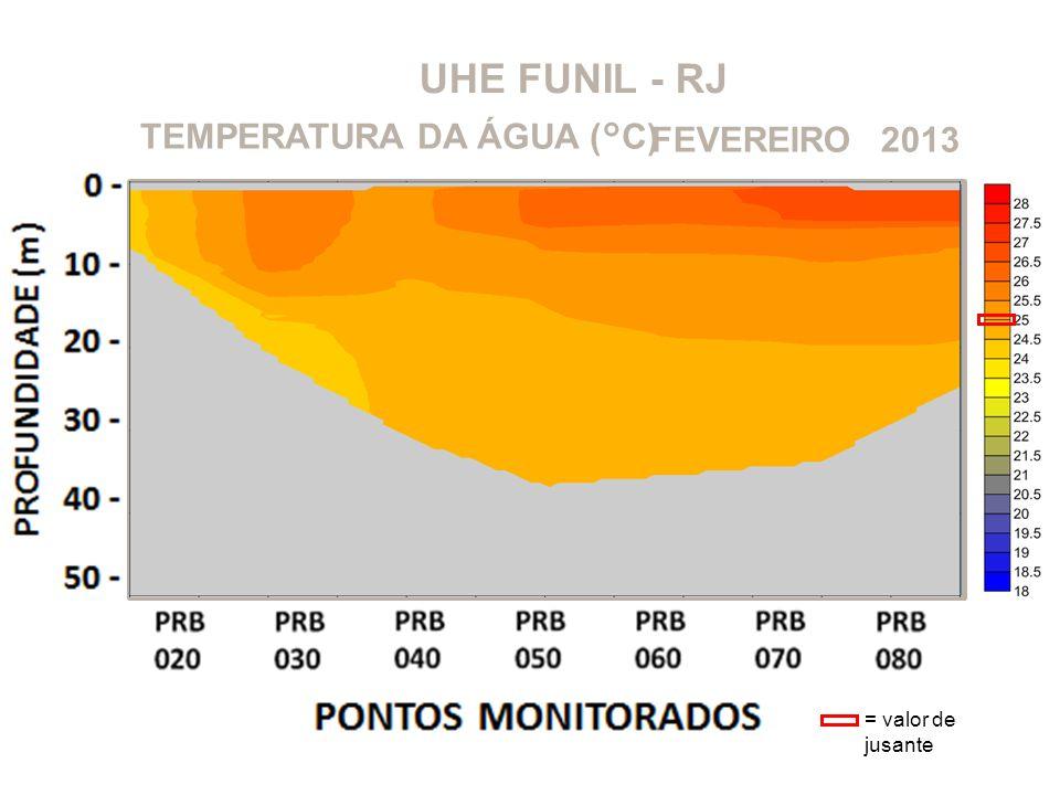 UHE FUNIL - RJ 2013FEVEREIROTEMPERATURA DA ÁGUA (°C) = valor de jusante
