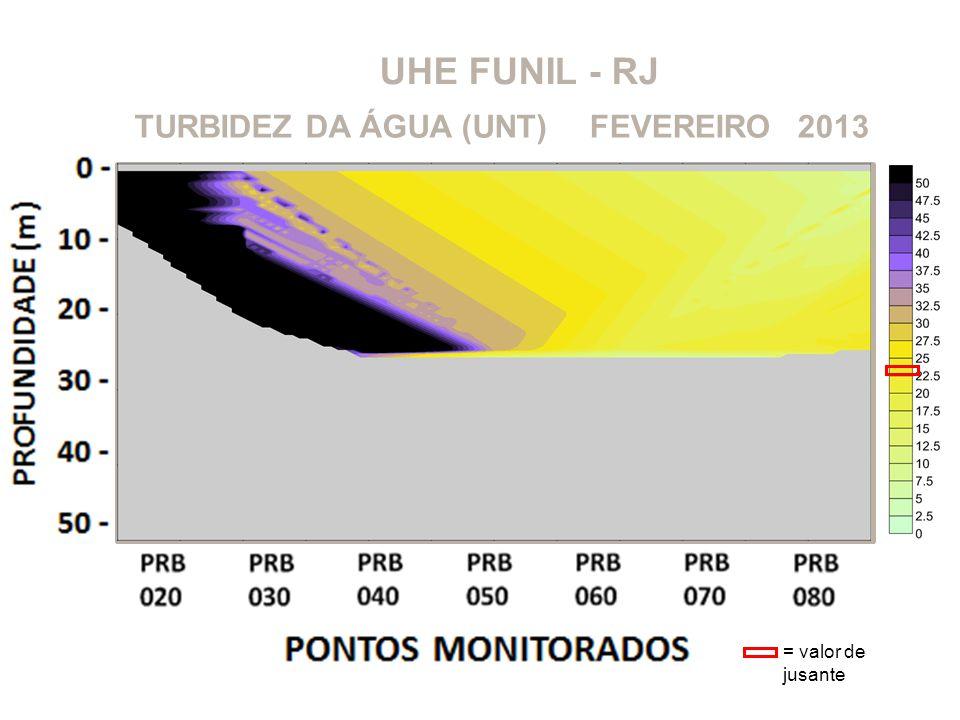 UHE FUNIL - RJ 2013FEVEREIROTURBIDEZ DA ÁGUA (UNT) = valor de jusante